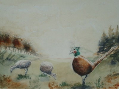 pheasants in water colour